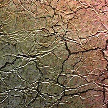 Фотообои на флизелиновой основе (мятая кожа)