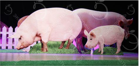 ростовые фигуры Свинки